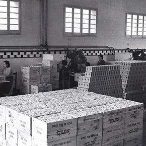 早期扩大生产规模和工厂人数